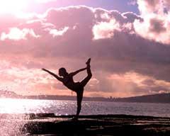 Femina Physical Therapy blog